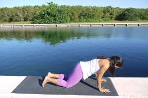 Exhale, bend the elbows and slowly begin to rest your chest and chin towards your mat