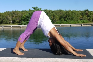 Adho Muka Svansana: Pressing your heart to your thighs come into Downward Facing Dog.